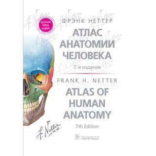 Атлас анатомии человека. Фрэнк Неттер 7 изд Терминология на русском, латинском и английском языках 2021 г.